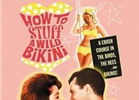 free movie of the day how to stuff a wild bikini