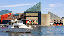 Motorboat at a harbor, Inner Harbor, Baltimore, Maryland, USA