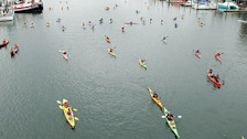 Kayak the Inner Harbour or Gorge Waterway