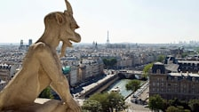 Notre Dame Gargoyle
