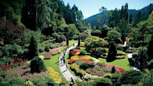 Butchart Gardens
