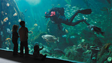 Vancouver Aquarium Marine Science Centre