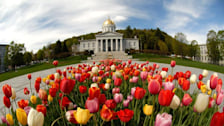 Spring in Montpelier