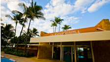 Waikiki Aquarium