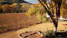 Verde Valley Wine Trail
