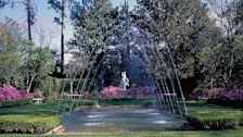 Diana Garden