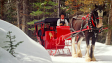 Sleigh Ride