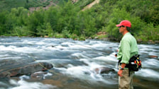 Fly Fishing on Gore Creek: Gore Creek Fly Fisherman
