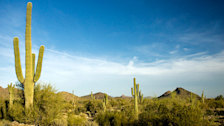 McDowell Mountain Regional Park