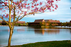 Disney's Polynesian Resort - Lake Buena Vista, Florida -