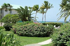 Colony Cove Beach Resort - Christiansted, US Virgin Islands -
