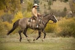 Wilderness Trails Ranch - Bayfield, Colorado - Horsing around