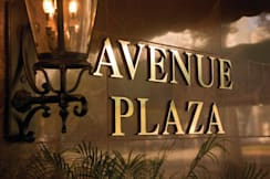 Wyndham Avenue Plaza - New Orleans, Louisiana -