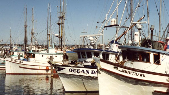 Fishing boats at Fishermans Termintal  Seattle Washington. Image shot 2001. Exact date unknown.