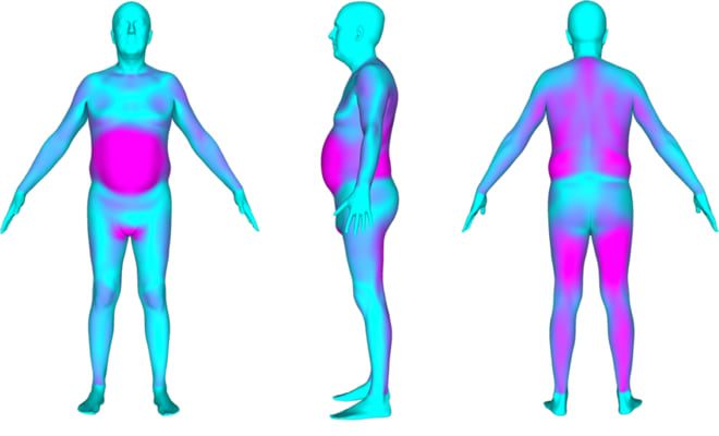 Body Labs scanning technology
