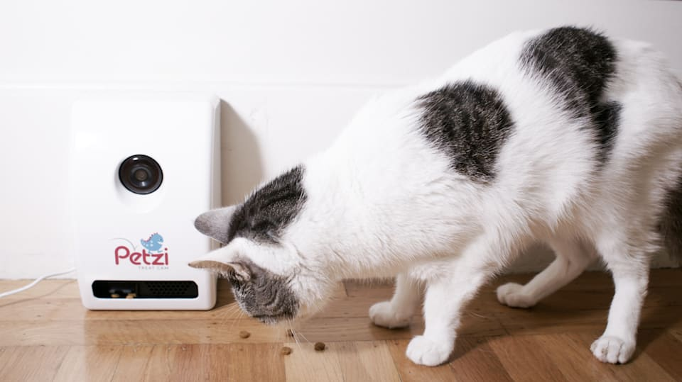 Shoot food at your pets with the Petzi Treat Cam