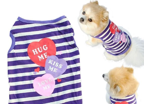 Spoil your pet on Valentine's Day with these awesome gifts