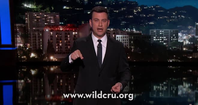 jimmy kimmel, cecil the lion