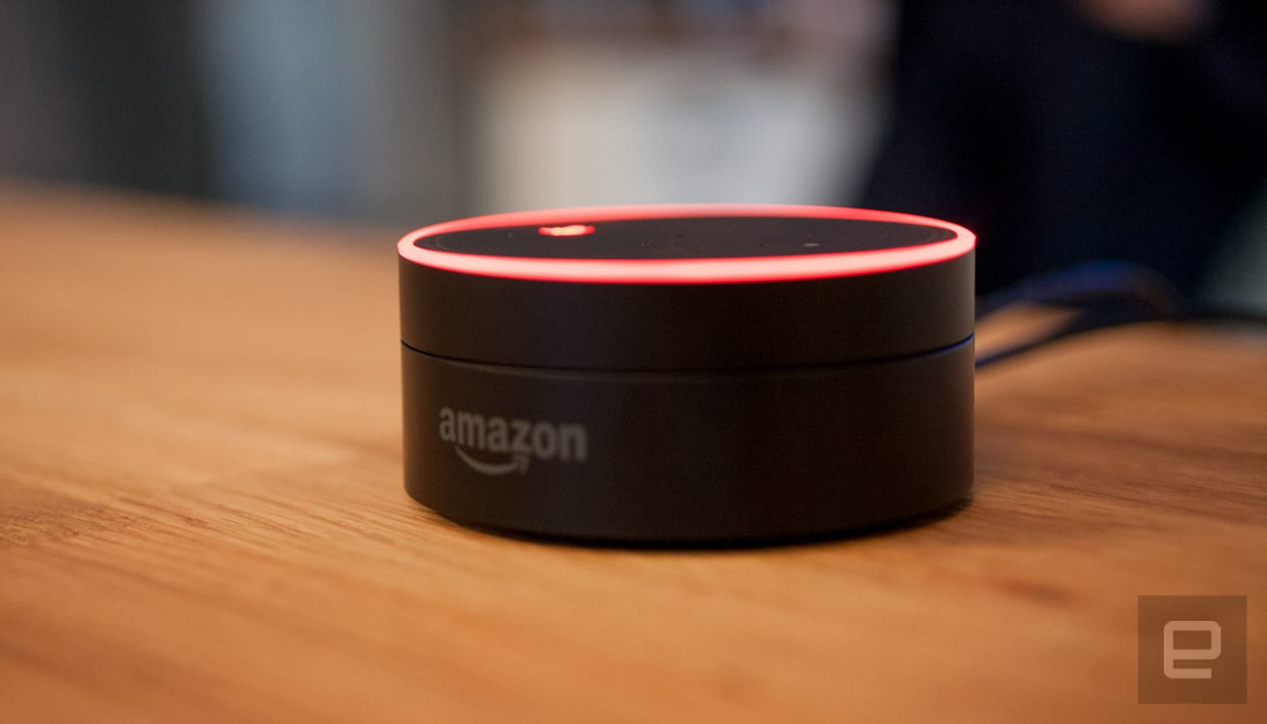 Now you can ask Amazon's Echo about your Fitbit stats