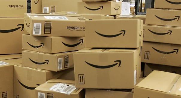 Amazon Fox