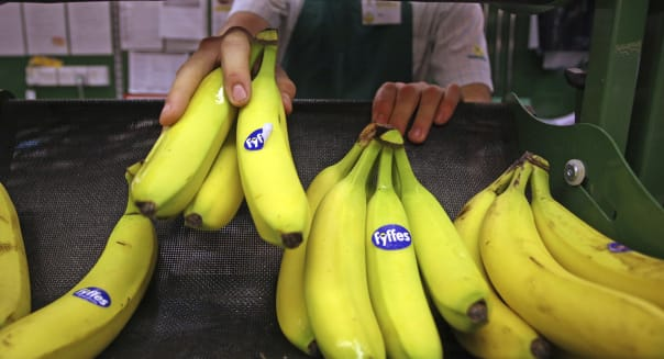 Chiquita Brands to Merge With Fyffes to Create Banana Leader