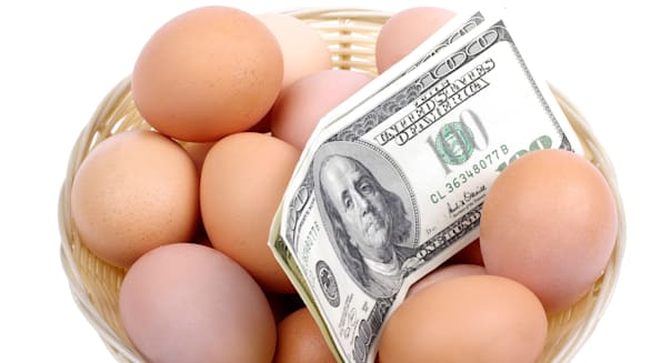 Eggs with dollars in basket isolated on white background. Financial concept.