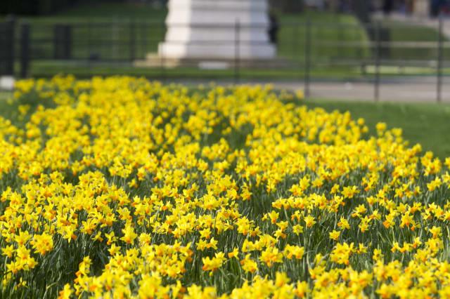 Londoners Enjoy The Warm Weather In Kensington Gardens