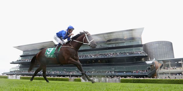 Winx makes it 16 wins in a row at George Ryder Stakes