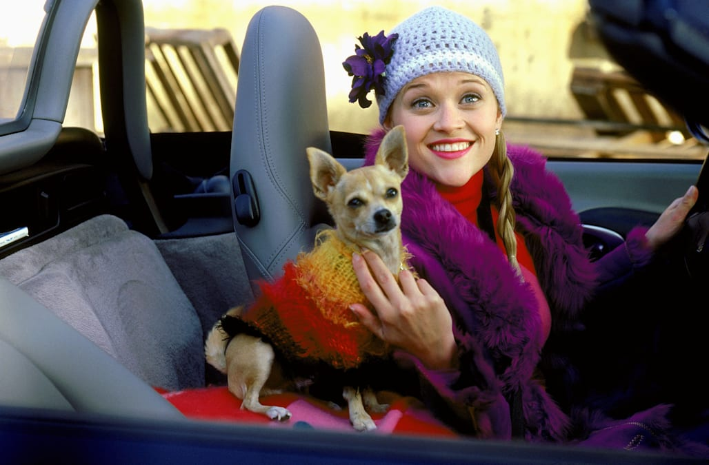 REESE WITHERSPOON & DOG LEGALLY BLONDE (2001)