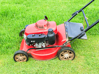 lawnmower cutting grass in the...