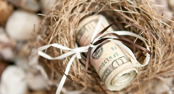 Roll of money in a nest