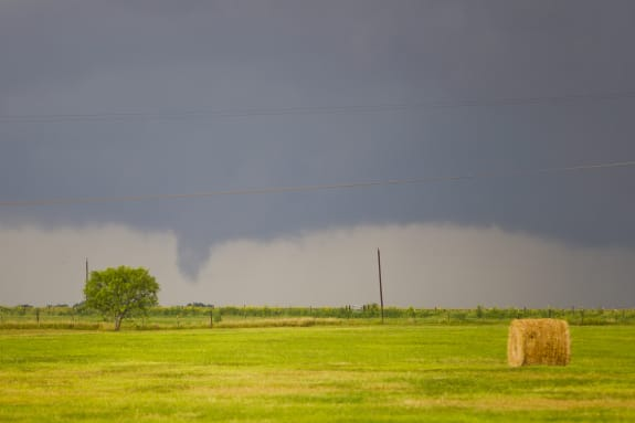 A supercell produces a brief tornado over a green hay field.