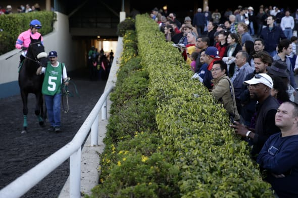 Hollywood Park Closes Horse Racing