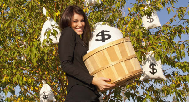 woman harvesting money bags from money tree