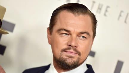 DiCaprio spricht mit Trump über Umweltschutz