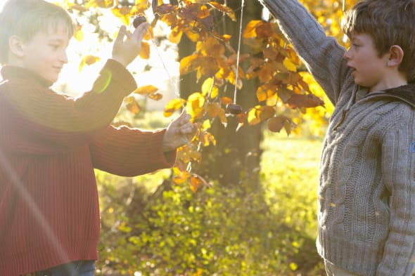 Two boys (6-8) playing with conkers in garden, autumn, (lens flare)