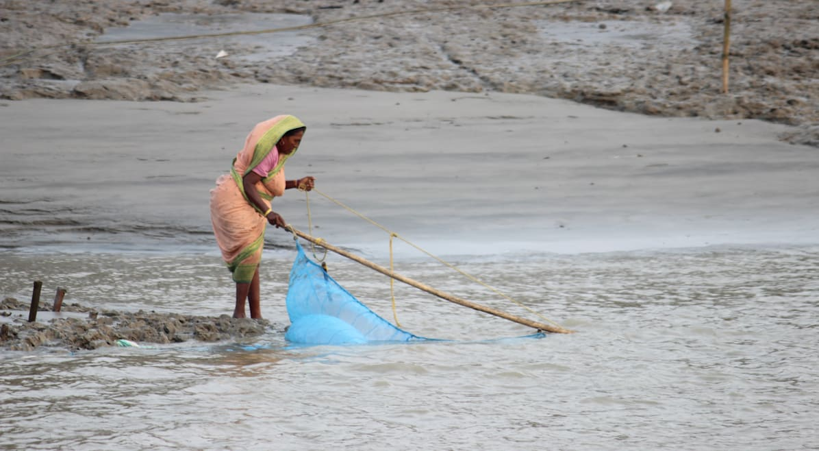 A fishing woman in the Sundarbans