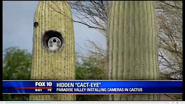 AZ town hides license plate readers in dozens of fake cacti