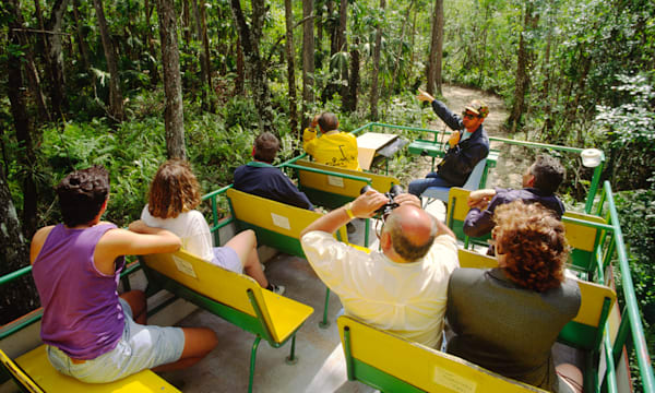 Sightseeing tourists on swamp buggy ride in Big Cypress National Preserve at Ochopee, on the Tamiami Trail, Florida, USA