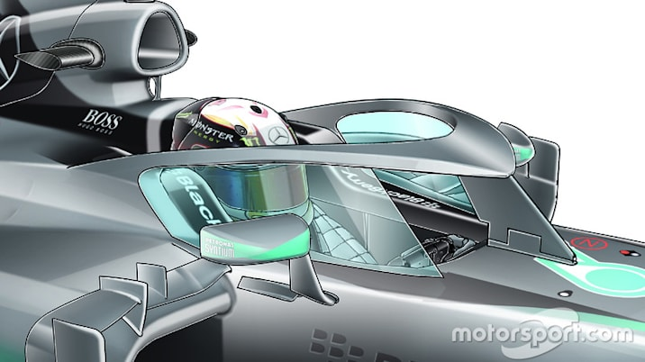 F1 closed halo canopy