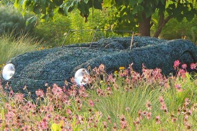 Porsche 356 Topiary