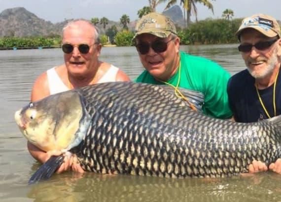 Fishermen use friend's ashes to catch 180-pound carp