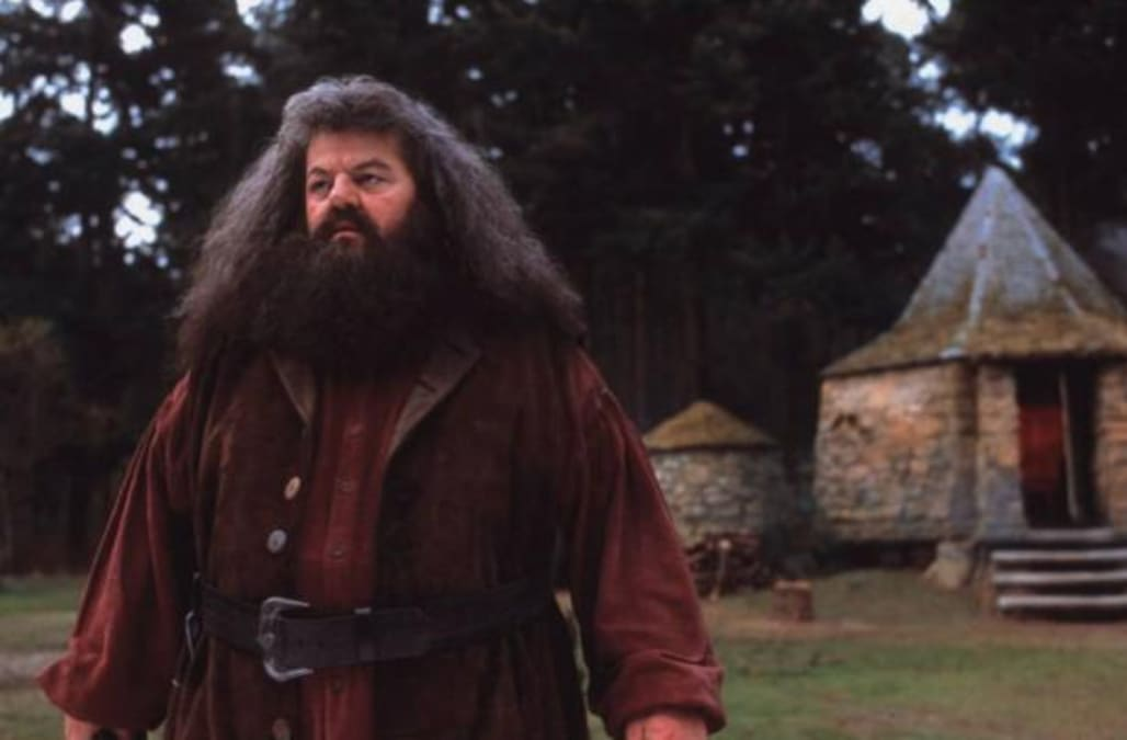 J k rowling reveals sad truth about beloved character What house was hagrid in