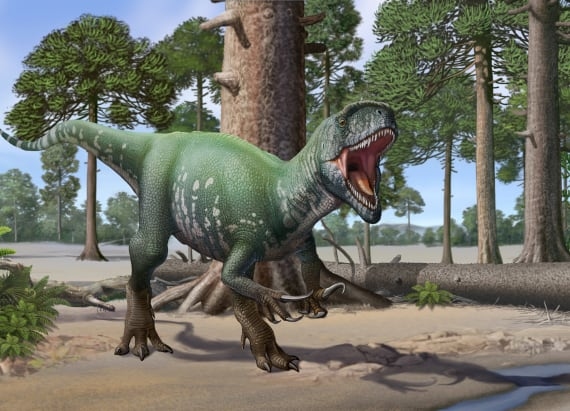 Scientists discover biggest known 'megaraptor'