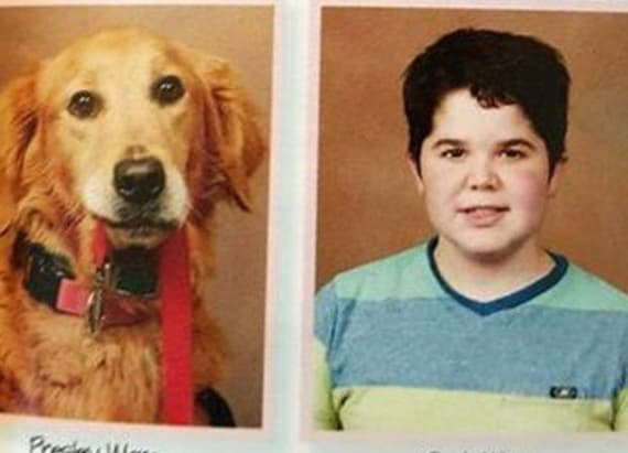 Service dog gets own yearbook photo next to partner