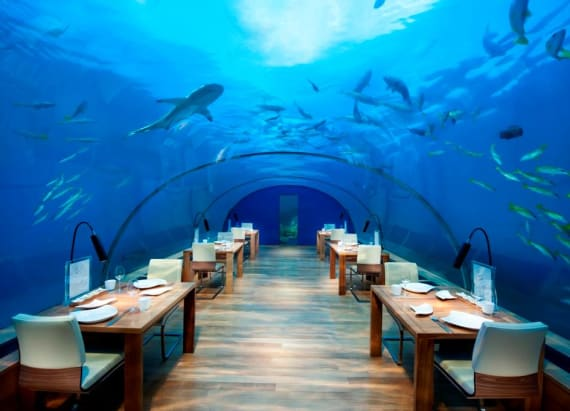This restaurant lets you dine undersea
