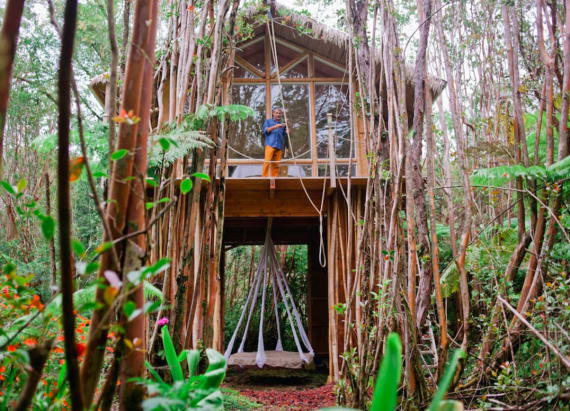 Sleep under a bamboo canopy in this dreamy treehouse