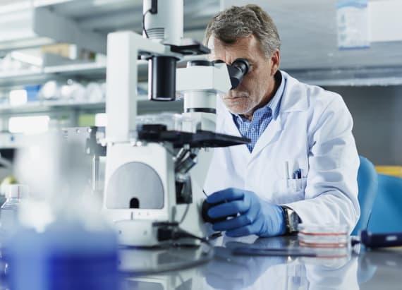 Scientists make breakthrough in evolution process