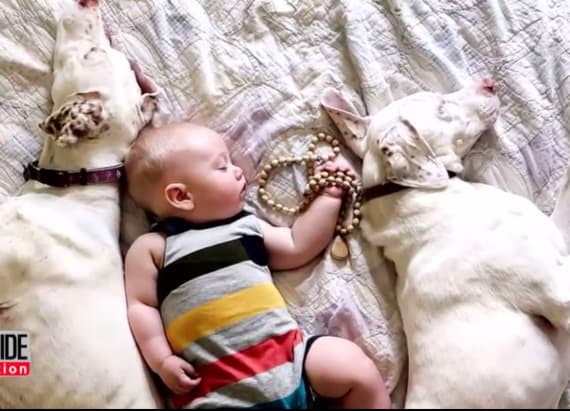 Naps with this baby and puppy is so cute