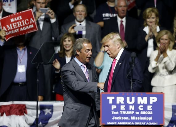 Nigel Farage's appearance at rally puzzled many